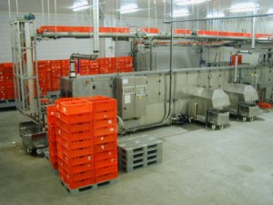 Crate washing systems